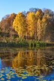 Paesaggio del lago in autunno Immagini Stock Libere da Diritti