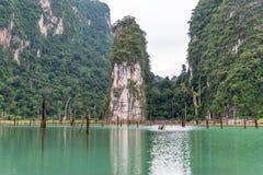 Paesaggio del lago, della foresta e della montagna verde smeraldo Cheow Lan Dam Sosta nazionale di Khao Sok thailand fotografia stock libera da diritti