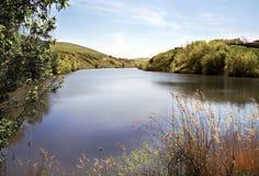Paesaggio del lago entro il giorno pieno di sole Immagini Stock Libere da Diritti