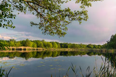 Paesaggio del lago evening Fotografia Stock
