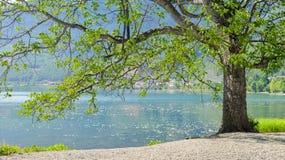 Paesaggio del lago Lugu, Lijiang, Cina fotografia stock