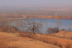 Paesaggio del lago nell'inverno Immagine Stock