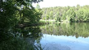 Paesaggio del lago nell'ora legale Campagna in Havelland in Germania stock footage