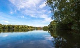 Paesaggio del lago summer con gli alberi ed il cespuglio verdi, Woking, Surrey fotografia stock