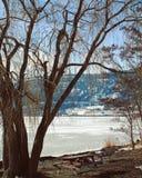 Paesaggio del lago winter fotografie stock libere da diritti