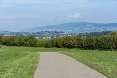Paesaggio del lago Zurigo di estate dal cielo blu della natura della destinazione di viaggio di turismo della Svizzera della trac Fotografie Stock
