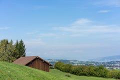 Paesaggio del lago Zurigo di estate dal cielo blu della natura della destinazione di viaggio di turismo della Svizzera della trac Immagine Stock Libera da Diritti