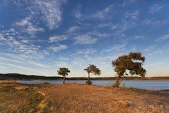 Paesaggio del lato del paese nell'Alentejo, Portogallo fotografia stock libera da diritti