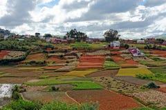 Paesaggio del Madagascar Immagine Stock