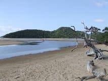 Paesaggio del mare Fotografie Stock