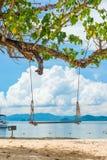 Paesaggio del mare con un'oscillazione nella priorità alta, una foto da Thail Immagini Stock Libere da Diritti