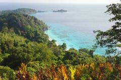 Paesaggio del mare e della giungla Fotografia Stock