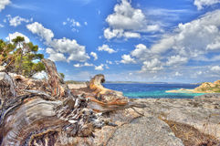Paesaggio del mare in HDR Fotografie Stock Libere da Diritti