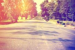 Paesaggio del modo di strada di estate con la foresta dell'albero Fotografie Stock Libere da Diritti