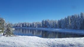 Paesaggio 4 del Montana Fotografia Stock