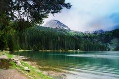 Paesaggio del Montenegro Fotografie Stock