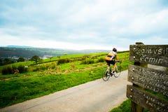 Paesaggio del mountain bike Fotografie Stock