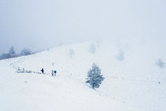 Paesaggio del moutain della neve durante l'inverno Immagine Stock Libera da Diritti