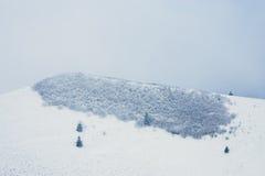 Paesaggio del moutain della neve durante l'inverno Fotografie Stock Libere da Diritti