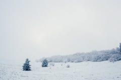 Paesaggio del moutain della neve durante l'inverno Immagini Stock
