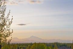 Paesaggio del Mt McKinley Fotografie Stock Libere da Diritti