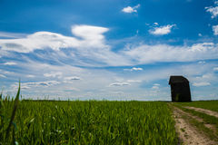 Paesaggio del mulino a vento Immagini Stock Libere da Diritti