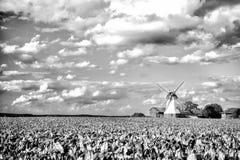 Paesaggio del mulino a vento dell'Olanda Fotografie Stock Libere da Diritti