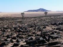 Paesaggio del Namibia Fotografie Stock Libere da Diritti