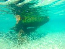 Paesaggio del naufragio Fotografia Stock