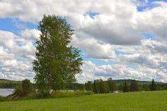 Paesaggio del Nord Alte nubi Fotografie Stock