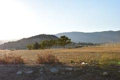 Paesaggio del nord degli agricoltori del Cipro Fotografie Stock