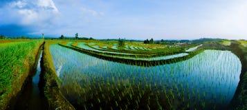 Paesaggio del nord dell'Indonesia immagini stock