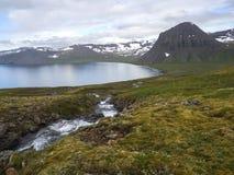 Paesaggio del Nord di estate, belle scogliere innevate e Alf fotografia stock libera da diritti