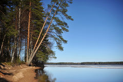Paesaggio del nord in Finlandia aprile Immagine Stock