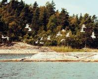 Paesaggio del nord selvaggio della natura lotto delle rocce sull'automobile di servizio postale della riva del lago Fotografia Stock