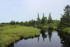 Paesaggio del Nuovo Brunswick fotografia stock libera da diritti