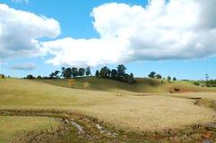 Paesaggio del paese Fotografie Stock