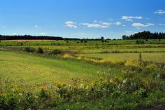 Paesaggio del paese Fotografia Stock Libera da Diritti