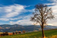 Paesaggio del paese in autunno tardo Fotografia Stock Libera da Diritti