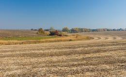 Paesaggio del paese con il campo raccolto Fotografie Stock Libere da Diritti