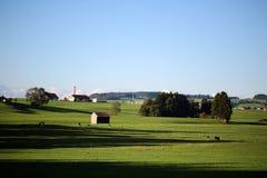 Paesaggio del paese con le mucche e l'azienda agricola Fotografia Stock Libera da Diritti