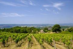 Paesaggio del paese da Orvieto a Todi, Umbria, Italia Fotografia Stock Libera da Diritti