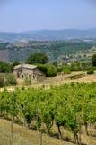 Paesaggio del paese da Orvieto a Todi, Umbria, Italia Fotografie Stock