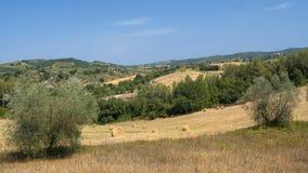 Paesaggio del paese da Orvieto a Todi, Umbria, Italia Immagine Stock Libera da Diritti
