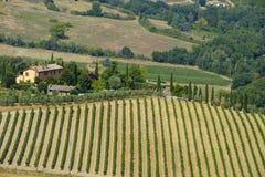 Paesaggio del paese da Orvieto, Umbria, Italia Fotografie Stock Libere da Diritti