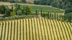 Paesaggio del paese da Orvieto, Umbria, Italia Fotografia Stock Libera da Diritti