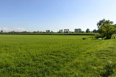 Paesaggio del paese del parco di Adda vicino a Abbadia Cerreto Fotografie Stock Libere da Diritti