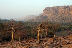 Paesaggio del paese di Dogon Immagine Stock Libera da Diritti