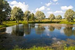 Paesaggio del paese di estate con lo stagno. Immagini Stock Libere da Diritti