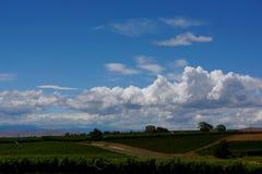 Paesaggio del paese di vino con le nuvole in cielo blu fotografie stock libere da diritti